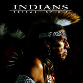 Play & Download Tribal Spirit by The Indians | Napster