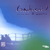 Ambient (Menorca Cova D'en Xoroi) by Various Artists