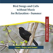 Bird Songs and Calls without Music for Relaxation - Summer by Rettenmaier