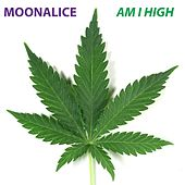 Play & Download Am I High by Moonalice | Napster