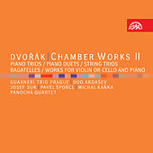 Dvořák: Chamber Works II by Various Artists
