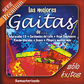Play & Download Las Mejores Gaitas De... by Various Artists | Napster