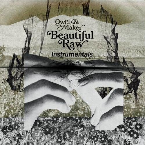 Beautiful Raw Instrumentals by Qwel & Maker