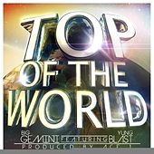 Top Of The World (feat. Yung Blast) - Single by Big Gemini