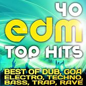 Play & Download 40 EDM Top Hits 2013 (Best of Dubstep, Electro, Psytrance, Progressive, Goa, Techno, Bass, Trap) by Various Artists | Napster