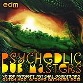 Play & Download Psychedelic Dub Masters (40 Top Psybient, Psy Chill, Downtempo, Glitch Hop, Groove Anthems 2013) by Various Artists | Napster