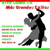 Vive Como Yo Más Grandes Éxitos by Various Artists