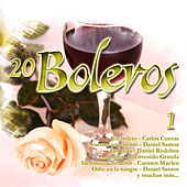 20 Boleros, Vol. 1 by Various Artists
