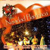 Play & Download Navidad Flamenca by Navidad Flamenca | Napster