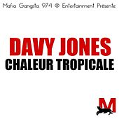 Play & Download Chaleur tropicale by Davy Jones | Napster