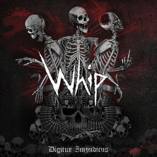 Digitus Impudicus by Whip