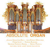 Absolute Organ von Various Artists