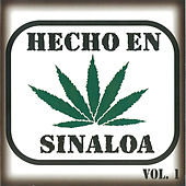 Hecho en Sinaloa, Vol. 1 by Various Artists