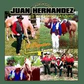 Play & Download El Poquitero by Los Rebeldes Del Norte | Napster
