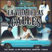 Play & Download La Vida De Las Calles by Various Artists | Napster