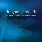Play & Download Dragonfly Breath by Paul Flaherty | Napster