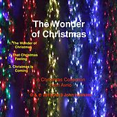 The Wonder of Christmas by Avrio