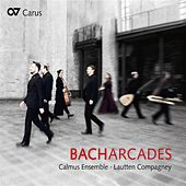 Bach Arcades von Various Artists