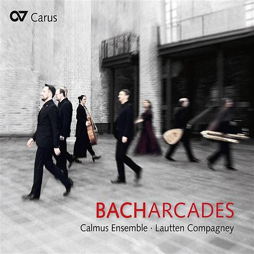 Bach Arcades by Various Artists