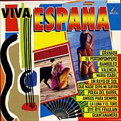Play & Download Viva España by Various Artists | Napster