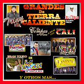 Los Grandes de Tierra Caliente by Various Artists