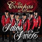 Adios Amor by Los Compas del Terre