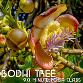 Play & Download Bodhi Tree 90 Minute Yoga Class: Music for Yoga, Meditation & Relaxation by Yoga Sound | Napster