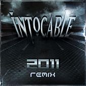 Robarte Un Beso Remix by Intocable