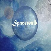 Play & Download Spacewalk by Spacewalk | Napster