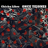 Once Tejones by Chicha Libre