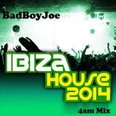 Play & Download Badboyjoe's Ibiza House 2014 (4am Mix) by Various Artists | Napster