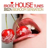 Play & Download Erotic House Tunes, Vol. 1 - Ibiza Bigroom Sensation by Various Artists | Napster