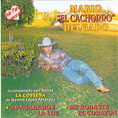 Play & Download Solo para Enamorados by Mario