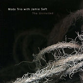 The Uninvited by Jamie Saft