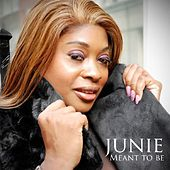 Meant to Be by Junie Morrison