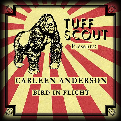 Play & Download Bird In Flight by Carleen Anderson | Napster
