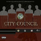 The City Council Project by Various Artists