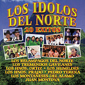 Play & Download Los Ídolos del Norte: 20 Éxitos by Various Artists | Napster