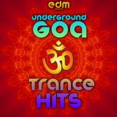Underground Goa Trance Hits (40 Top Psychedelic Trance Blasters) by Various Artists