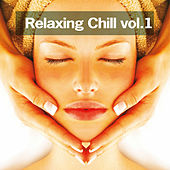 Play & Download Relaxing Chill, vol. 1 by Various Artists | Napster