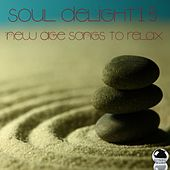 Soul Delight 15 New Age Songs to Relax by Various Artists