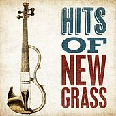 Hits of Newgrass von Various Artists