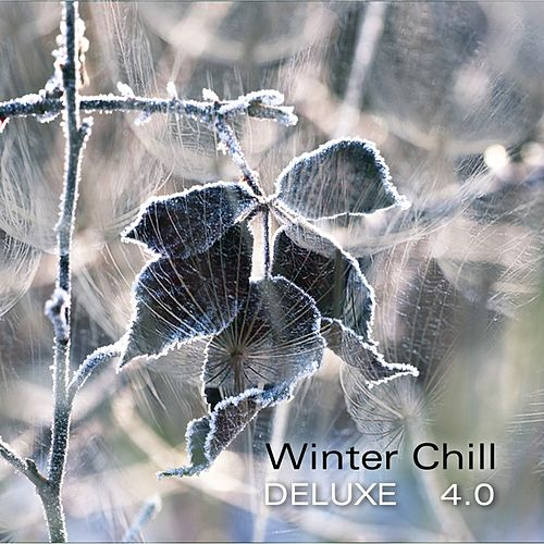 Winter Chill Deluxe 4.0 by Various Artists