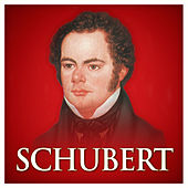 Play & Download Schubert (Red Classics) by Various Artists | Napster
