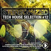 Play & Download Stereonized - Tech House Selection, Vol. 12 by Various Artists | Napster