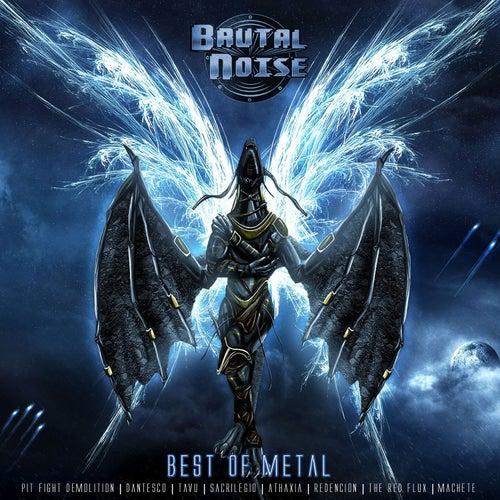 Brutal Noise: Best of Metal by Various Artists