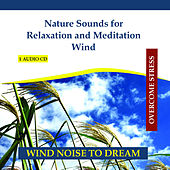 Nature Sounds for Relaxation and Meditation - Wind - Sound of Wind Noise by Rettenmaier