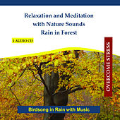 Play & Download Relaxation and Meditation with Nature Sounds - Rain in Forest - Birdsong in Rain with Music by Rettenmaier | Napster