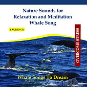 Nature Sounds for Relaxation and Meditation - Whale Song by Rettenmaier