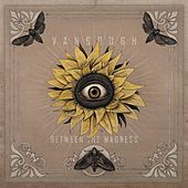 Play & Download Between the Madness by Vangough | Napster
